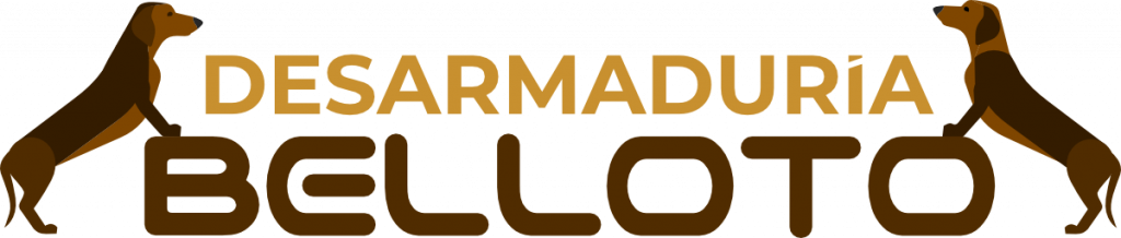 logotipo-desarmaduria-belloto-1024x218-1